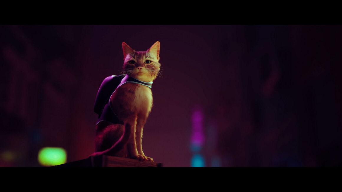 PS5-kattengame Stray krijgt screenshots